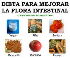 mejorar la flora intestinal