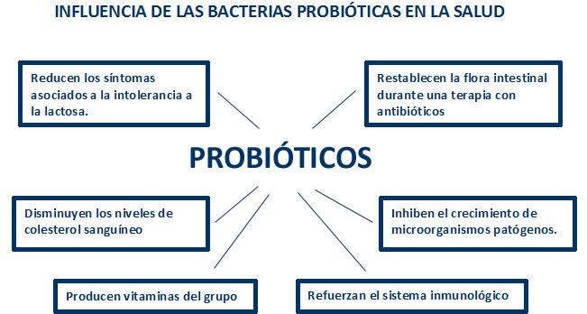 probioticos -1
